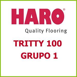 Haro TRITTY 100 Grupo 1