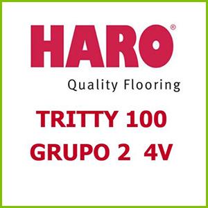 Haro Tritty 100 Grupo 2 4V Bisel